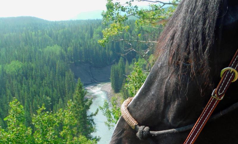 Horseback Riding Back To Nature Turner Valley